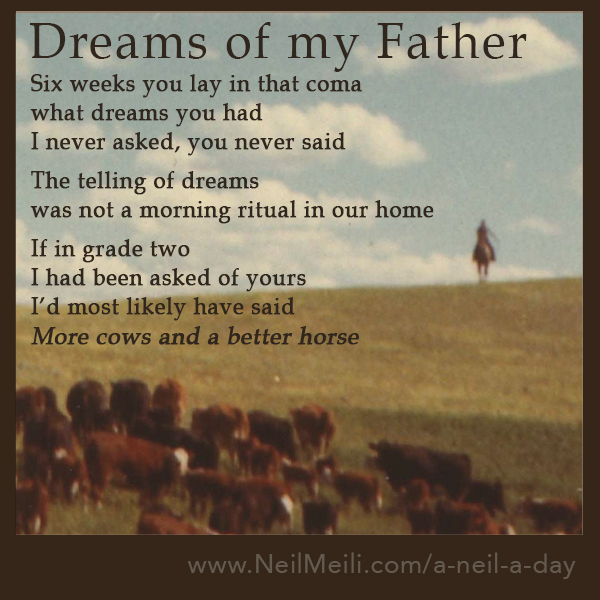 Six weeks you lay in that coma what dreams you had  I never asked, you never said  The telling of dreams was not a morning ritual in our home  If in grade two  I had been asked of yours I'd most likely have said  More cows and a better horse