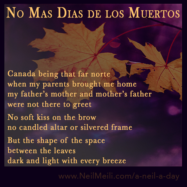 Canada being that far norte when my parents brought me home my father's mother and mother's father were not there to greet  No soft kiss on the brow no candled altar or silvered frame  But the shape of the space between the leaves dark and light with every breeze