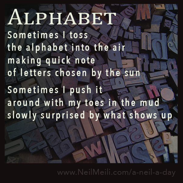 Sometimes I toss the alphabet into the air making quick note of letters chosen by the sun  Sometimes I push it around with my toes in the mud slowly surprised by what shows up