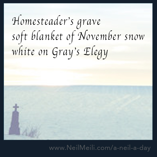 Homesteader's grave  Soft blanket of November snow white on Grey's Elegy