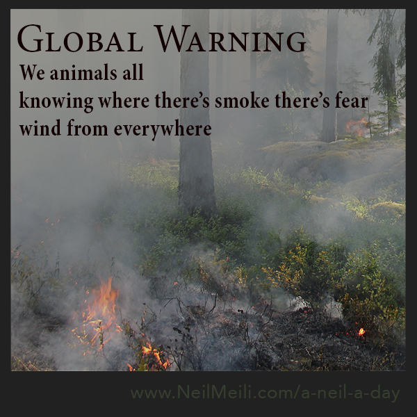 We animals all knowing where there's smoke there's fear wind from everywhere