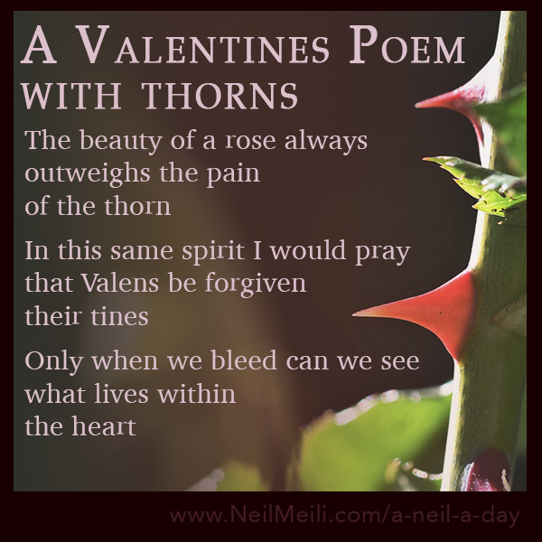 The beauty of a rose always outweighs the pain of the thorn  In this same spirit I would pray that Valens be forgiven their tines  Only when we bleed can we see what lives within the heart