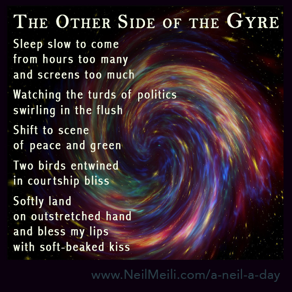 Sleep slow to come from hours too many and screens too much  Watching the turds of politics swirling in the flush  Shift to scene of peace and green  Two birds entwined in courtship bliss  Softly land on outstretched hand and bless my lips with soft-beaked kiss