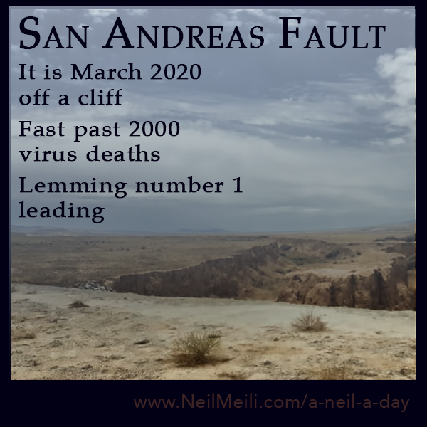 It is March 2020 off a cliff  Fast past 2000 virus deaths  Lemming number 1 leading