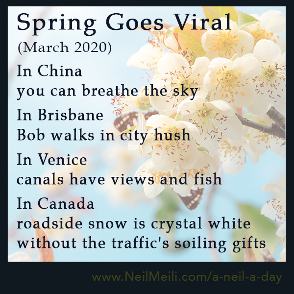 In China  you can breathe the sky  In Brisbane  Bob walks in city hush  In Venice  canals have views and fish  In Canada  roadside snow is crystal white   without the traffic's soiling gifts