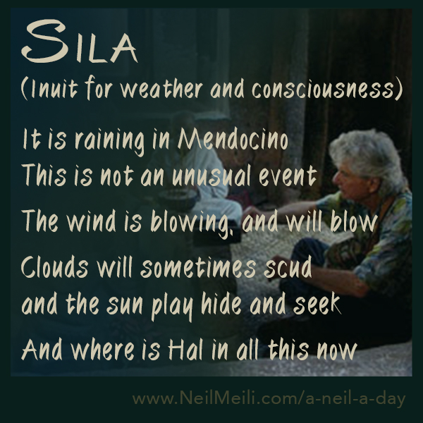 Sila  (Inuit for weather and consciousness)  It is raining in Mendocino This is not an unusual event  The wind is blowing, and will blow  Clouds will sometimes scud and the sun play hide and seek  And where is Hal in all this now