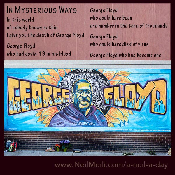 In this world of nobody knows nothin I give you the death of George Floyd  George Floyd who had covid-19 in his blood  George Floyd  who could have been  one more number in the tens of thousands  George Floyd who could have died of virus  George Floyd who has become one