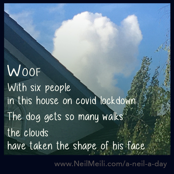 With six people in this house on covid lockdown  The dog gets so many walks  the clouds have taken the shape of his face