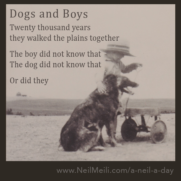 Twenty thousand years they walked the plains together  The boy did not know that The dog did not know that
