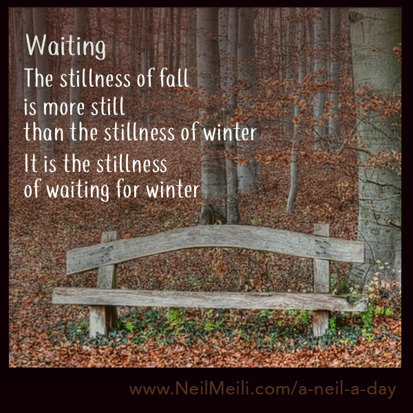 The stillness of fall  is more still than the stillness of winter  It is the stillness of waiting for winter