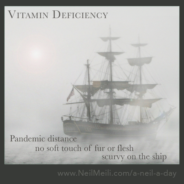 Pandemic distance            no soft touch of fur or flesh                              scurvy on the ship