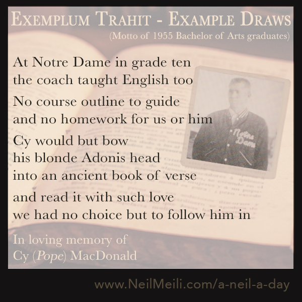 At Notre Dame in grade ten the coach taught English too  No course outline to guide and no homework for us or him   Cy would but bow his blonde Adonis head into an ancient book of verse  and read it with such love we had no choice but to follow him in  In loving memory of Cy (Pope) MacDonald