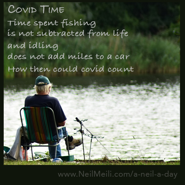 Time spent fishing is not subtracted from life  and idling  does not add miles to a car  How then could covid count