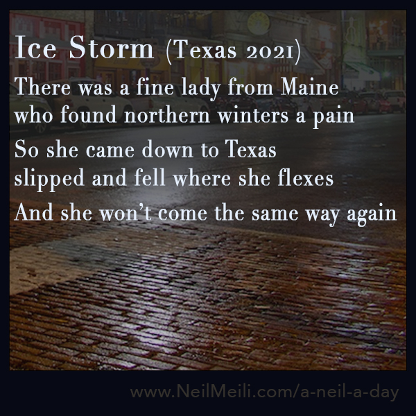 There was a fine lady from Maine  who found northern winters a pain   So she came down to Texas  slipped and fell where she flexes   And she won't come the same way again