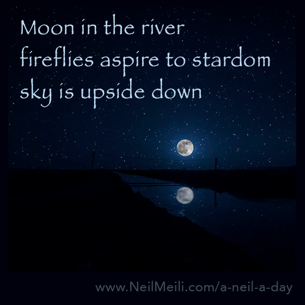 Moon in the river  fireflies aspire to stardom  sky is upside down