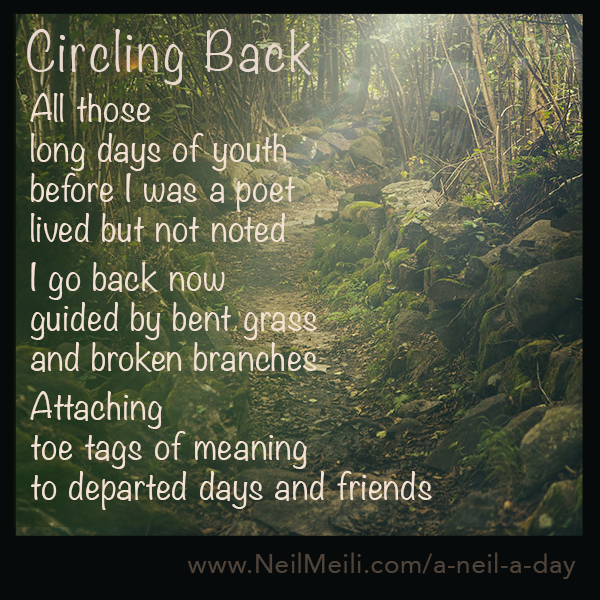 All those long days of youth before I was a poet lived but not noted  I go back now guided by bent grass and broken branches  Attaching toe tags of meaning to departed days and friends