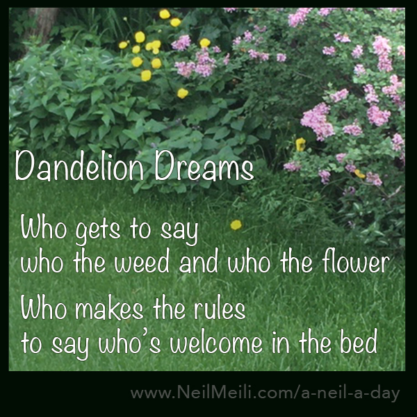 Who gets to say who the weed and who the flower Who makes the rules to say who's welcome in the bed