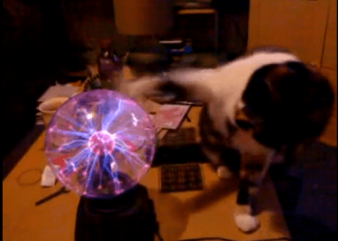 plasma_vs_cat04