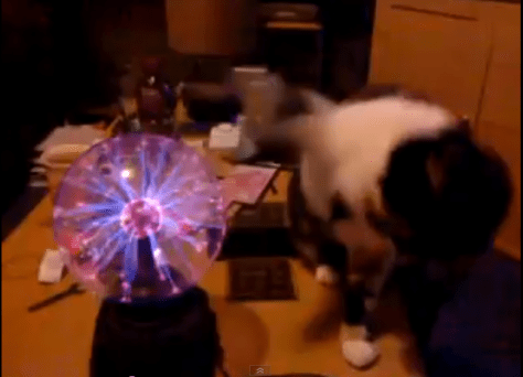 plasma_vs_cat05
