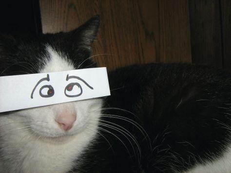 cat_anime_eye10