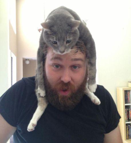 cat_hats02