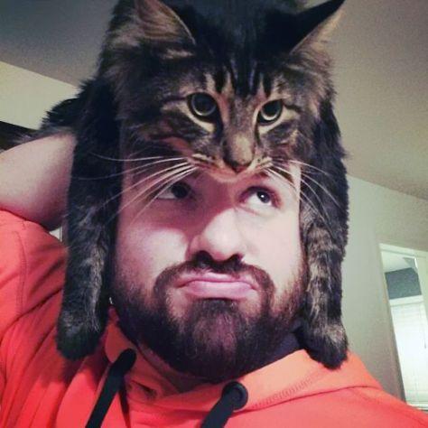 cat_hats08