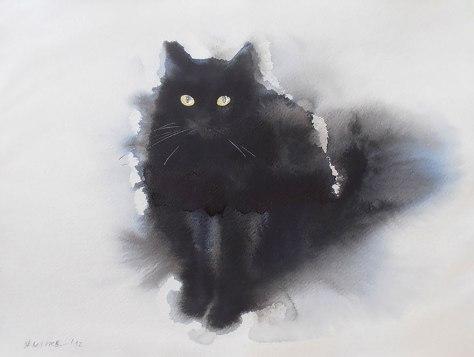 endrepenovac_blackcat01