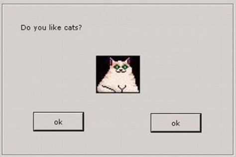 【猫画像】Do you like cat?