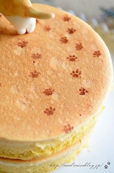 cat_sweets05