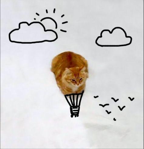 doodle_cat_photo07