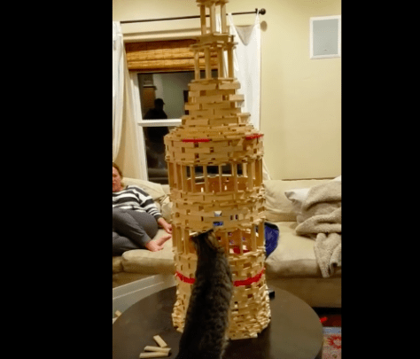 cat_breaks_tower01