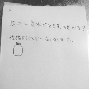 IMG_8544[1]