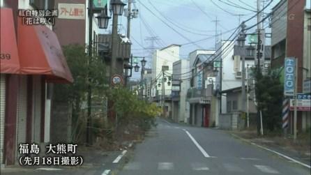 Beim Kōhaku werden aber auch traurigere Dinge angesprochen.
