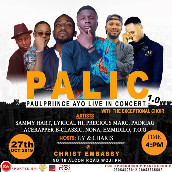 Paul prince live in concert