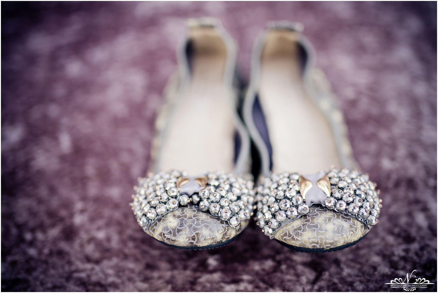 Langkloof-Roses-Wedding-Photos-Nelis-Engelbrecht-Photography-005