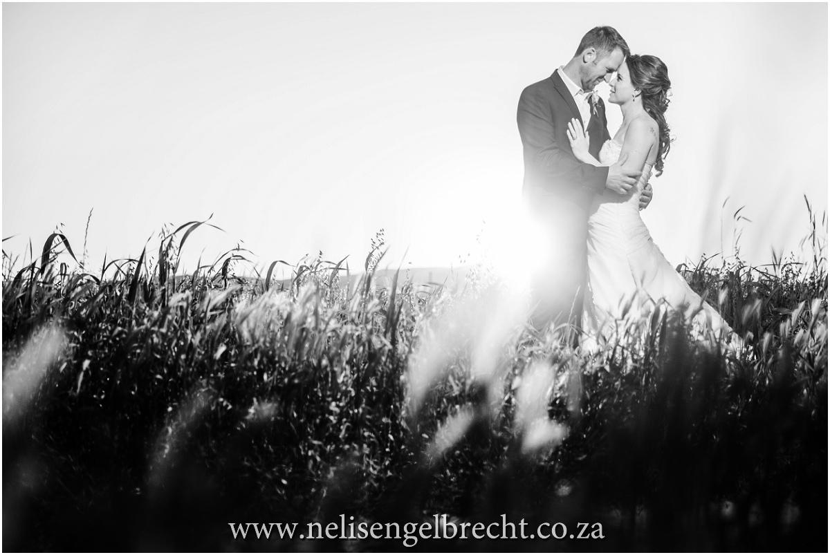 Nelis-Engelbrecht-Photography-831