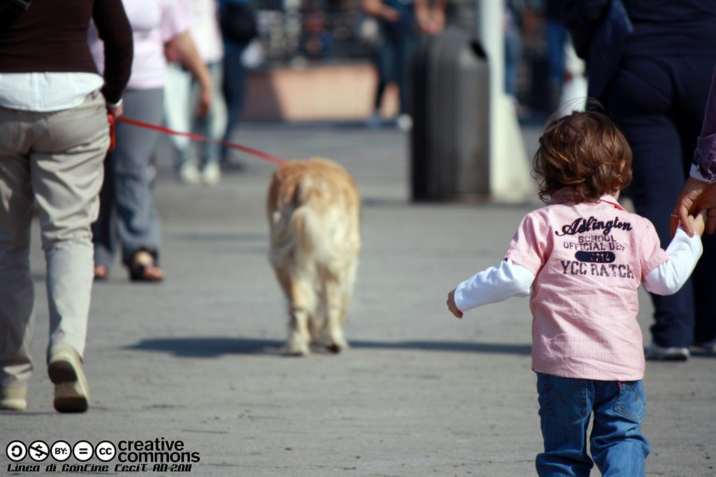 Seguendo il cane