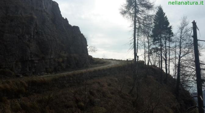 Una breve fuga sul Grappa: le Meatte e il sentiero naturalistico