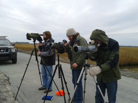 Josh, Alex, and Mark watching the distant godwits in frustration. (Photo by Tim Schreckengost)