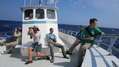 Pelagic birding aboard the Stormy Petrel II (Photo by Andy McGann)