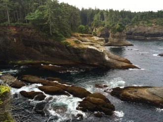 Typical coastline habitat of the Olympic Peninsula, as seen from Cape Flattery. (Photo by Alex Lamoreaux)