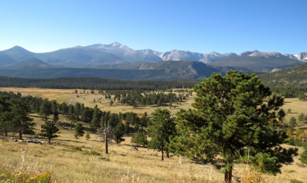 At the base of the mountains, this open terrain is the favored viewing area of many confiding Elk.