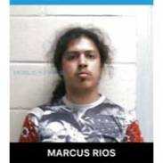 New Albany MS Marcus Rios arrested