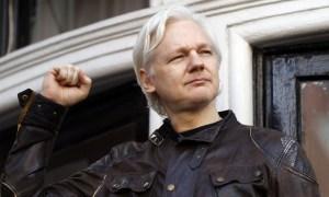 NEMiss.News Julian Assange