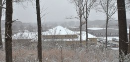 snow-2 (1)
