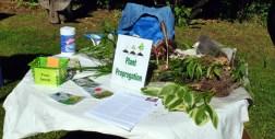 plant sale 14