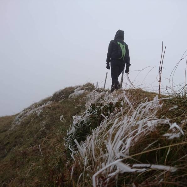 #winteriscoming #tourche #javerne