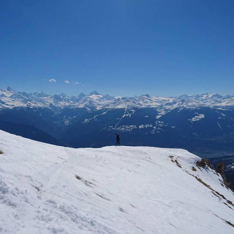 #slushybluebirdfreerideday #montana #frisek @moussafrisek @frisek