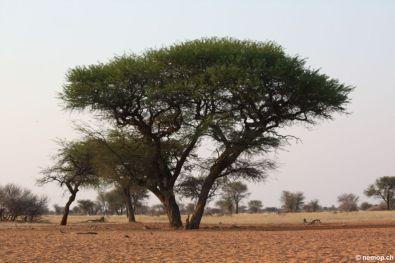namibia-80