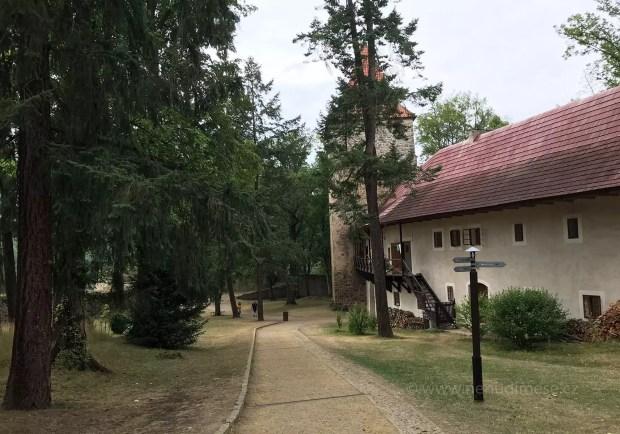 hrad_zvikov_2019_05